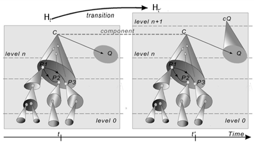 Figure 1. Hierarchical Evolutive System, with a ramification of C