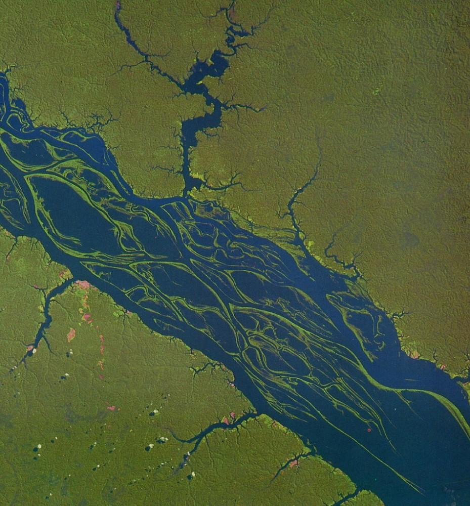 Rio Negro, NASA Modis Satellite (2008)
